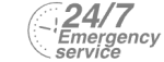 24/7 Emergency Service Pest Control in Petts Wood, St Mary Cray, BR5. Call Now! 020 8166 9746